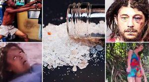 Waspadai Peredaran Narkoba Jenis Flakka di Sibolga
